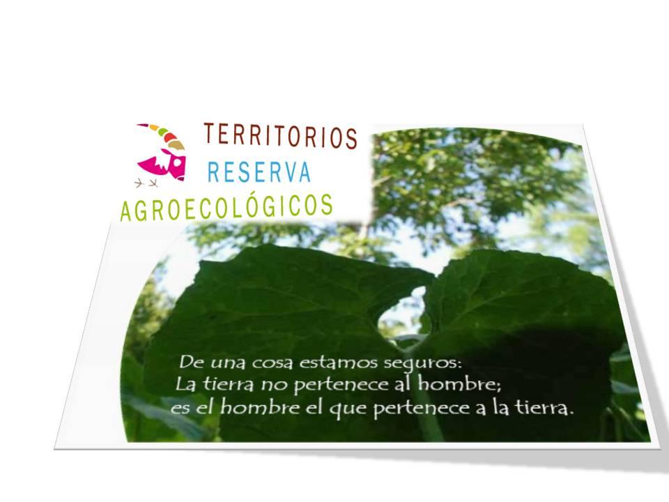 portada presentacion Red TERRAE 2015