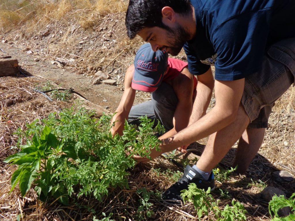 En formación de agroecología