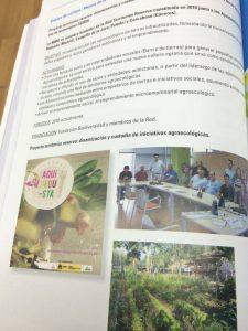 Proyecto dinamizacion TERRAE libro FEMP