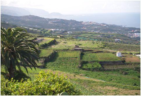 San Juan de la Rambla 1