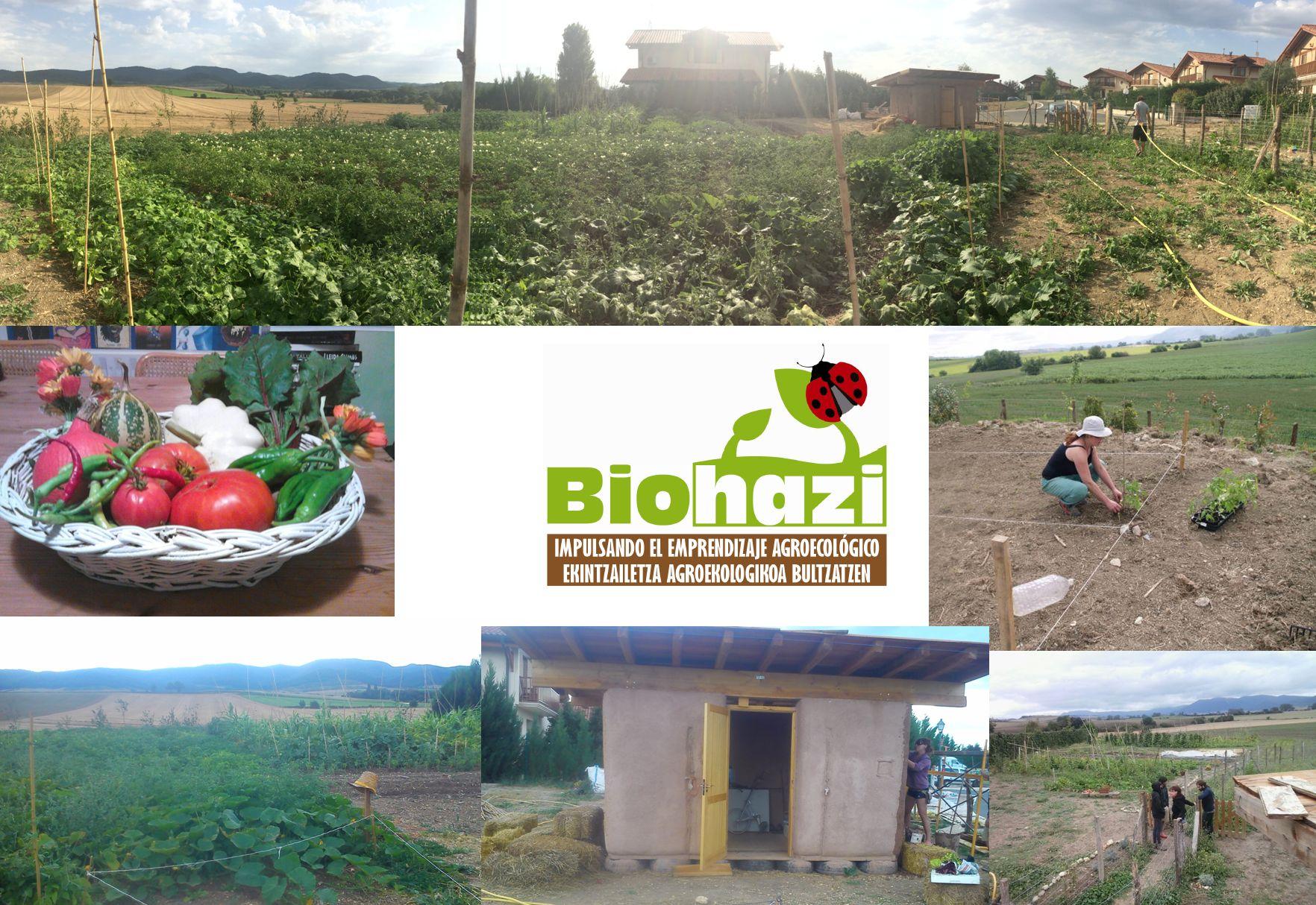 biohazi