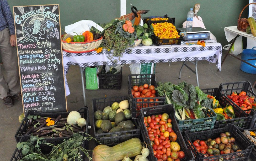 Dinamizar mercados, papel municipal