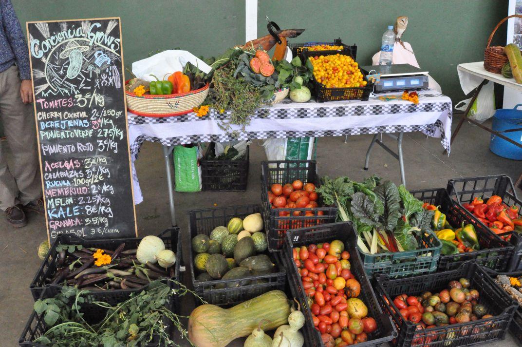 Puesto de mercado agroecológico